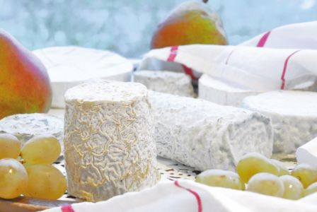 fromages-chevre-poitou-vienne86.jpg